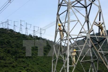 Điện lực miền Nam dồn lực đưa điện về vùng khó khăn
