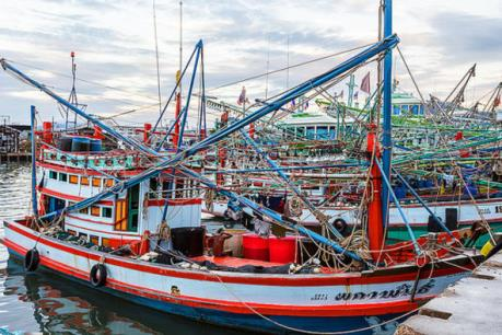 EU tiếp tục cảnh báo khả năng cấm nhập khẩu thủy-hải sản Thái Lan