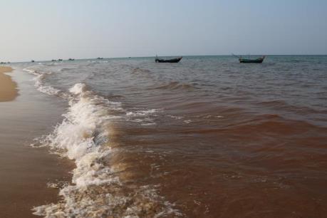 Khảo sát vùng biển có nghi vấn cá chết xếp lớp ở Quảng Bình