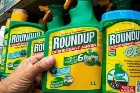 """WHO: Thuốc diệt cỏ Roundup """"chưa chắc"""" là nguyên nhân gây ung thư"""