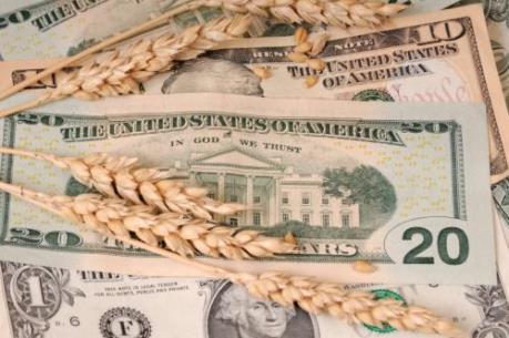 Thị trường nông sản tuần qua đồng loạt lên giá