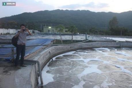 Đà Nẵng: Không đánh đổi tình trạng ô nhiễm để phát triển kinh tế