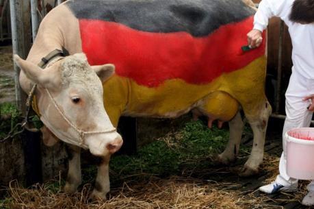 Đức cho phép nông dân được thỏa thuận về giá sữa