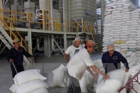 Hơn 72.000 tấn gạo đến với 540 nghìn học sinh nghèo cả nước