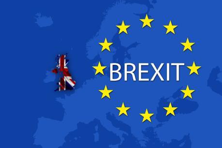Vấn đề Brexit: EU sẽ thay đổi dù Anh đi hay ở