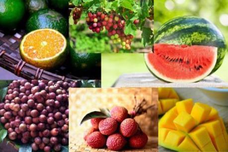 Phân biệt một số loại hoa quả Việt Nam với Trung Quốc