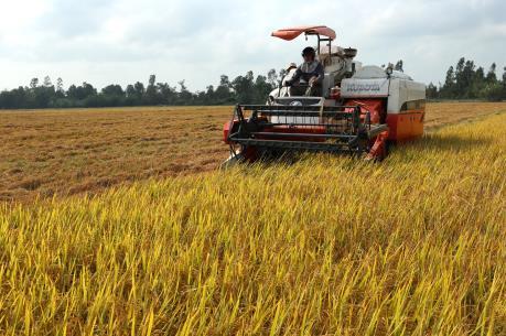 Tăng trưởng nông nghiệp sụt giảm trong nửa đầu năm 2016