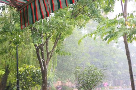 Dự báo thời tiết 3 ngày tới: Bắc bộ có mưa rào và dông