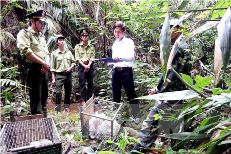 Vấn nạn buôn bán động vật hoang dã ở châu Á