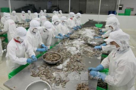 Hậu Brexit: Xuất khẩu tôm Việt Nam có xu hướng giảm