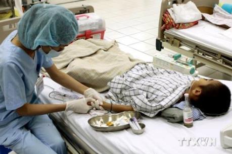 Cảnh báo bệnh viêm não Nhật Bản vào đỉnh dịch