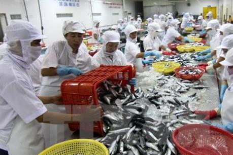 Truy xuất nguồn gốc thủy sản để không bị phạt hàng triệu USD