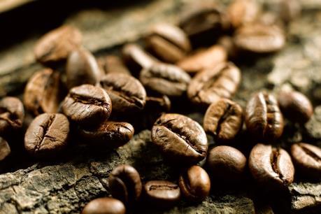 VCF: Cam kết sản xuất các sản phẩm cà phê nguyên chất, không độn đậu nành