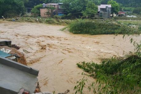 Cảnh báo lũ khẩn cấp trên sông Thao