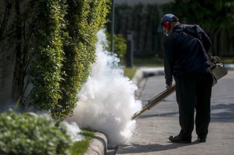 Tình hình lây nhiễm virus Zika tại Mỹ vẫn phức tạp