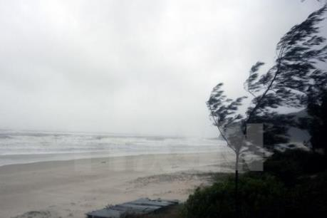Tin mới về áp thấp gần Biển Đông