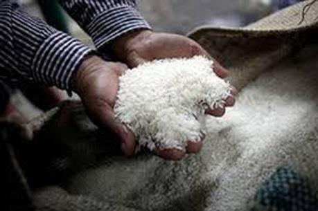 Chính phủ Thái Lan đang cân nhắc tiếp tục hay dừng bán gạo dự trữ