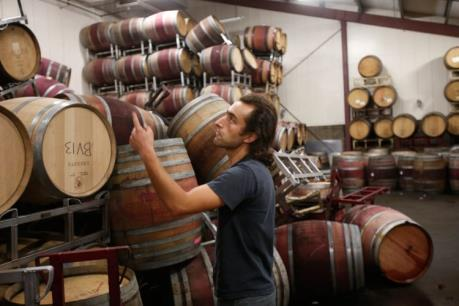 Du lịch rượu vang hút khách Tây Âu