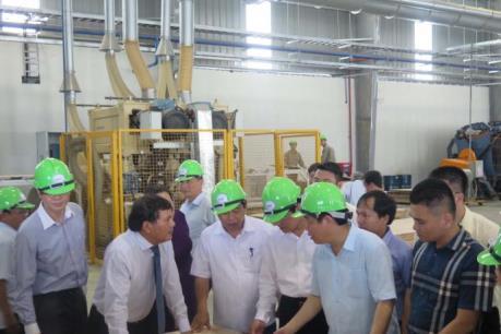 Phó Thủ tướng Vương Đình Huệ khánh thành Nhà máy chế biến gỗ Nghệ An