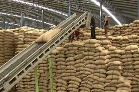 Thái Lan tạm dừng việc đấu thầu bán gạo dự trữ