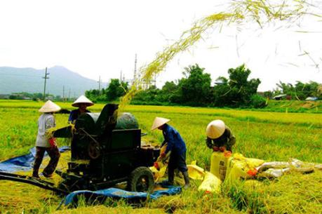 Phát triển nông nghiệp bền vững trong hội nhập ASEAN