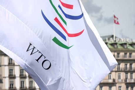 Ukraine khởi kiện lên WTO về việc Nga hạn chế hàng hóa quá cảnh