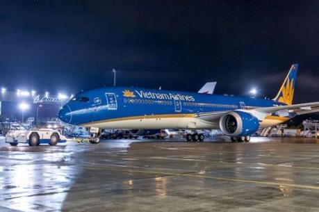 Vietnam Airlines kiểm tra máy bay do chim va vào động cơ