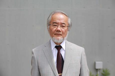 Giải Nobel Y học 2016 thuộc về nhà khoa học người Nhật Bản
