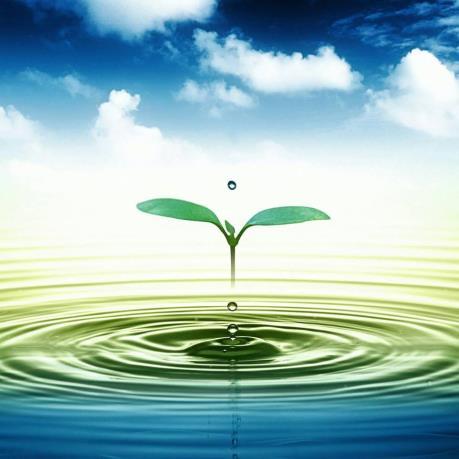 Cấp thoát nước Tuyên Quang sắp IPO 1,8 triệu cổ phần