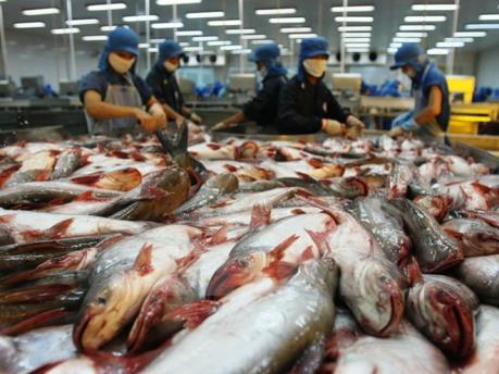 Ngành nào có lợi thế nhất khi Hiệp định FTA Việt Nam-EAEU bắt đầu?