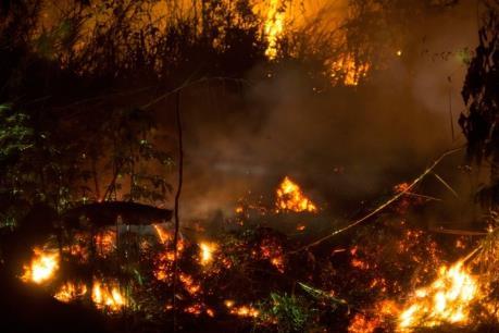 Hàng chục ha đất than bùn ở Indonesia bùng cháy giữa mùa mưa