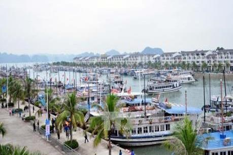 Thu phí 20.000 đồng/lượt ra vào Cảng tàu quốc tế Tuần Châu