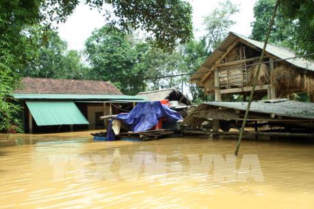 Các tỉnh, thành phố từ Nghệ An đến Ninh Thuận chủ động ứng phó và khắc phục hậu quả mưa lũ