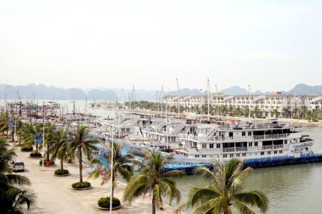 Quảng Ninh có ý kiến về việc thu phí qua Cảng tàu khách quốc tế Tuần Châu