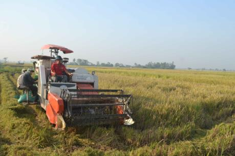 Trên 94.000 ha đã có nước cho vụ Đông Xuân