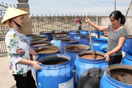 Vụ nước mắm có chứa thạch tín cao: Hiệp hội Nước mắm Phan Thiết lên tiếng