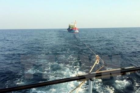 Đưa vào bờ an toàn 11 ngư dân và tàu cá BĐ 99047 TS gặp nạn