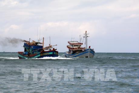Đưa vào bờ an toàn 14 lao động trên hai tàu cá bị chìm