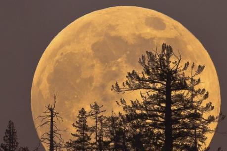 Thời gian nào ngắm siêu mặt trăng đẹp nhất tại Việt Nam trong ngày 14/11?