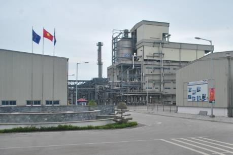 Kết luận thanh tra việc đầu tư 2 dự án nhiên liệu sinh học và xơ sợi Đình Vũ
