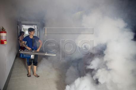 WHO: Zika không còn là tình trạng khẩn cấp toàn cầu