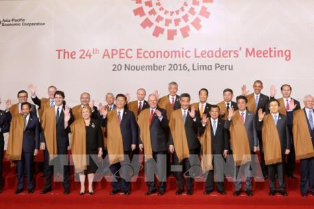 Chủ tịch nước Trần Đại Quang dự Phiên họp toàn thể Hội nghị Cấp cao APEC 2016 tại Peru