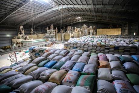 Thái Lan: 1 triệu tấn gạo đã được bán trong phiên đấu thầu đầu tiên năm 2017