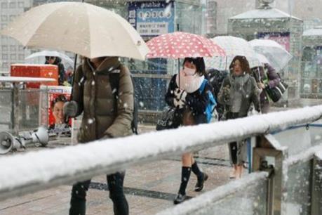 Lần đầu tiên trong 54 năm qua, tuyết rơi bất thường ở Tokyo vào tháng 11