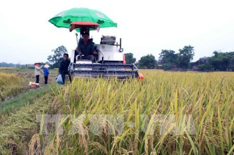 """Hà Nội là """"vùng trũng"""" về cơ giới hóa trong nông nghiệp"""