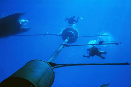 Các tuyến cáp quang biển kết nối Việt Nam với thế giới