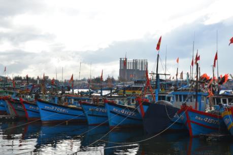 Xử lý ô nhiễm tại khu vực âu thuyền và cảng cá Thọ Quang