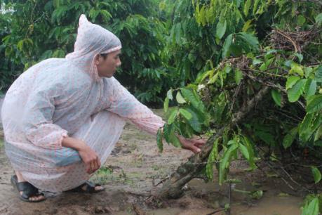 Đắk Lắk: Nhiều địa phương bị thiệt hại nặng do mưa lớn kéo dài