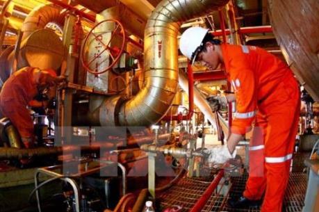 PVN phấn đấu tăng trữ lượng dầu khí từ 10 - 15 triệu tấn