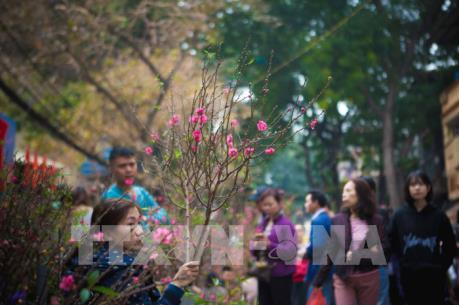 Xuân mới, hy vọng mới trên đất Thăng Long ngàn năm tuổi
